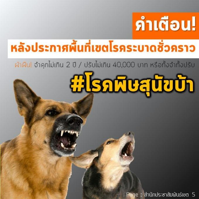 Phuket déclare une épidémie de rage à Chalong
