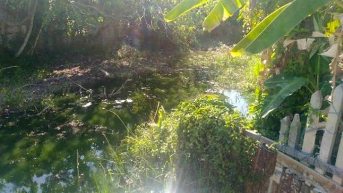 La Municipalité de Chalong face à un nouveau problème de pollution de l'eau