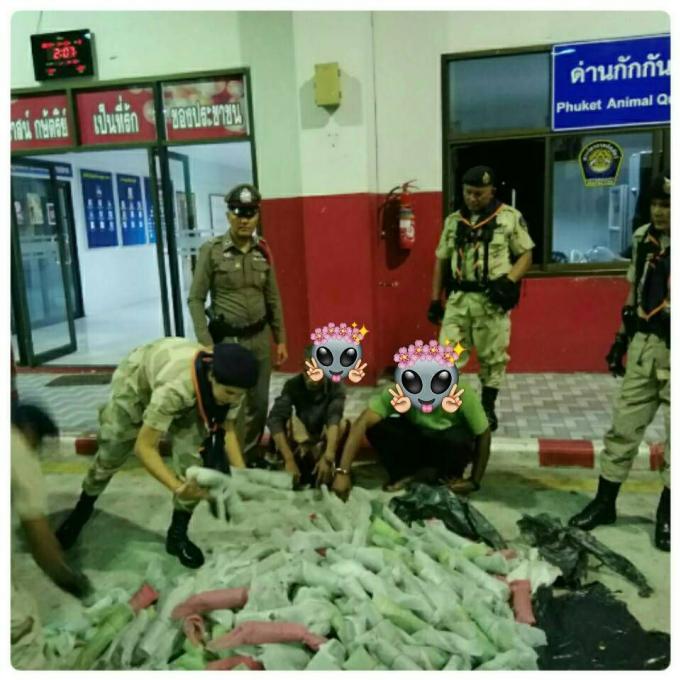Deux personnes arrêtées avec 100 kilos de kratom