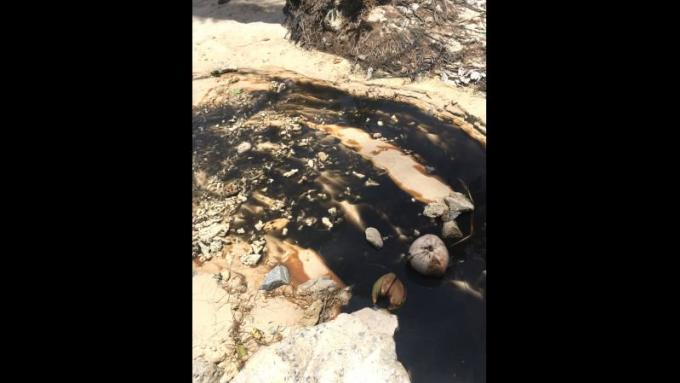 Les officiels inspectent les eaux noires qui s'écoulent sur Merlin Beach