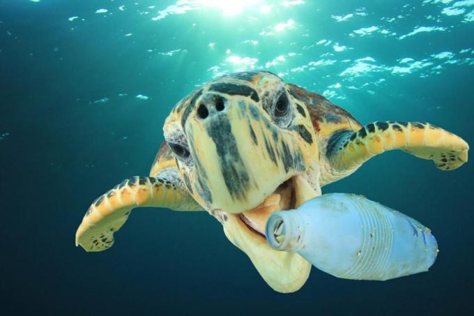 La Thaïlande va interdire trois sortes de plastiques d'ici la fin d'année