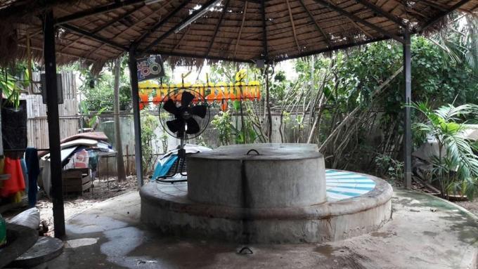 Ouverture d'une enquête après la découverte d'un tigre enchaîné au Zoo de Phuket – Vidéo