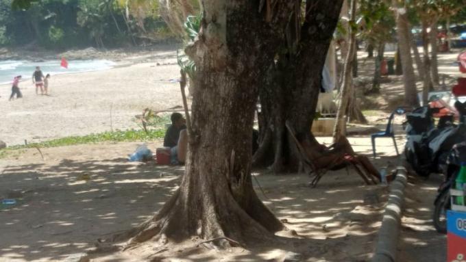 L'arrivée des sauveteurs à Surin Beach reportée jusqu'à nouvel ordre