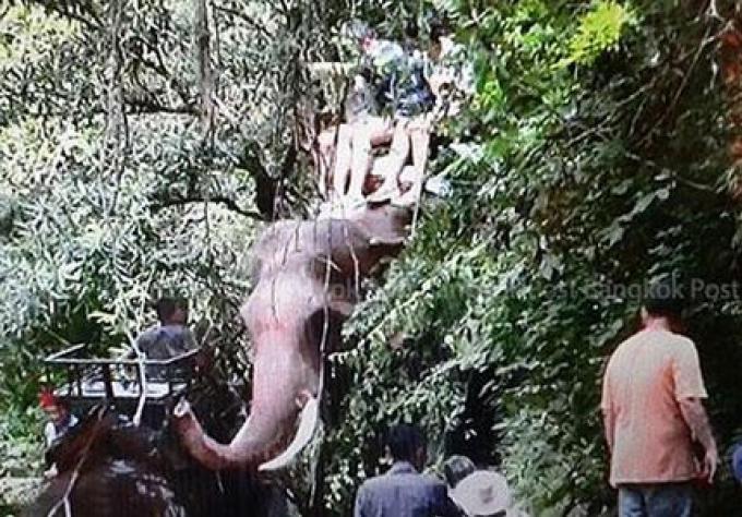 Touristes terrifiés sauvés du tueur