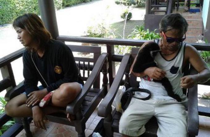 Le couple présentant un gibbon pour des photos sur Phi Phi arrêté