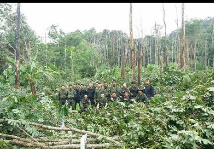 Les officiers restituent 82 rai au Département des forêts de Phuket
