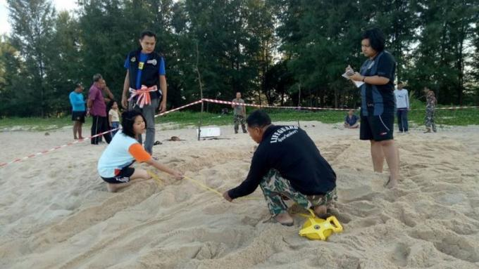 Les parcs nationaux de Phuket s'efforcent de protéger les nids de tortues