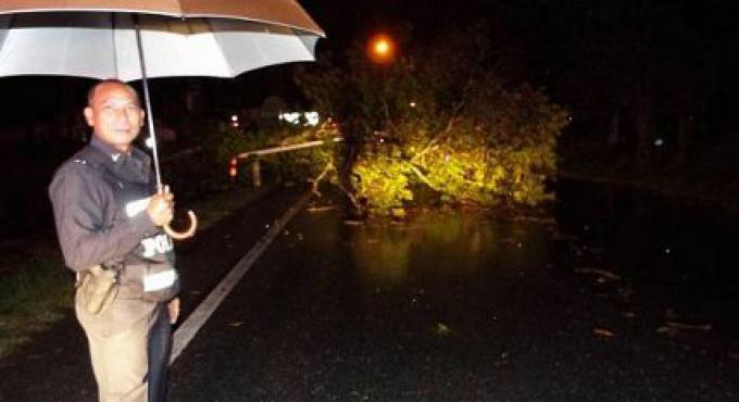 Phuket dans le blackout après qu'un arbre est tombé causant une panne electrique