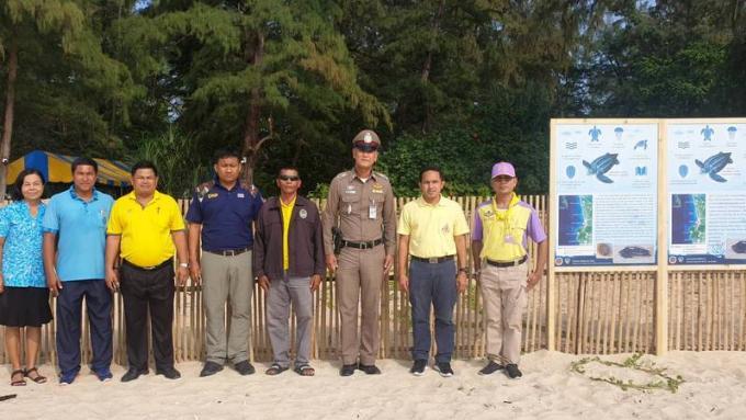 Les oeufs de tortue de Phang Nga devraient éclore ce weekend
