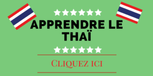 Petite initiation pratique au thaï bis